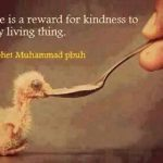 Islam's Universal Mercy to living things